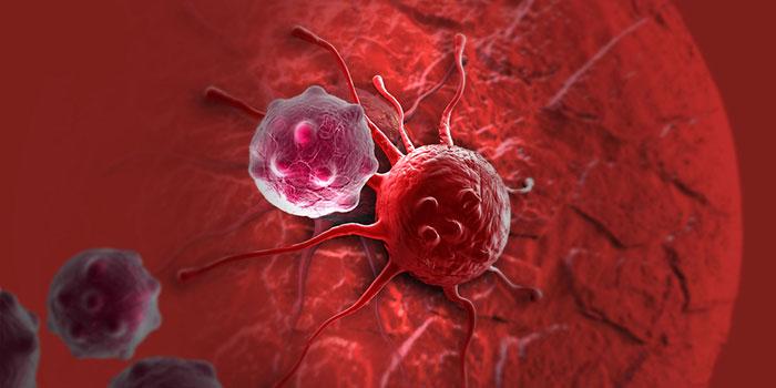 Филоподии-и-инвазивность-рака