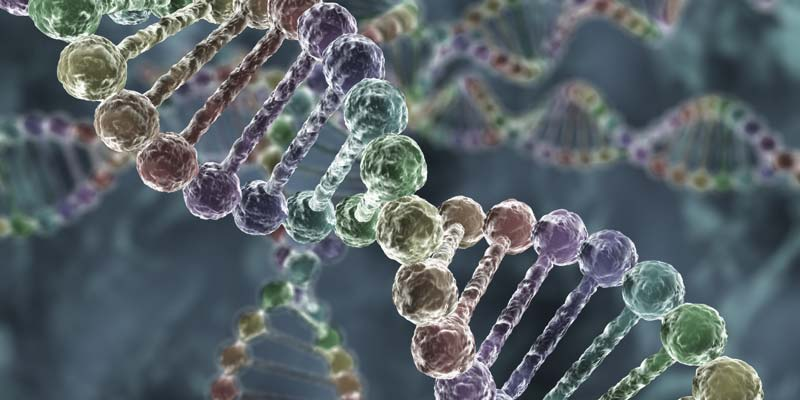 Gen-pomogaet-predskazivat-recediv-raka-kishki