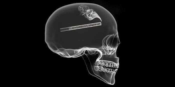 Никотин способствует метастазированию рака легкого в мозг