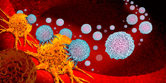 Новый-иммунопрепарат-против-рака