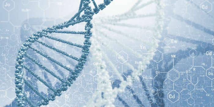 Однонуклеотидные полиморфизмы и риск рака