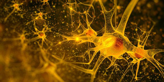 Раковые-клетки-маскируются-под-нейроны