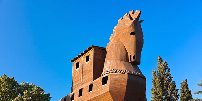 Троянский-конь-из-наночастиц