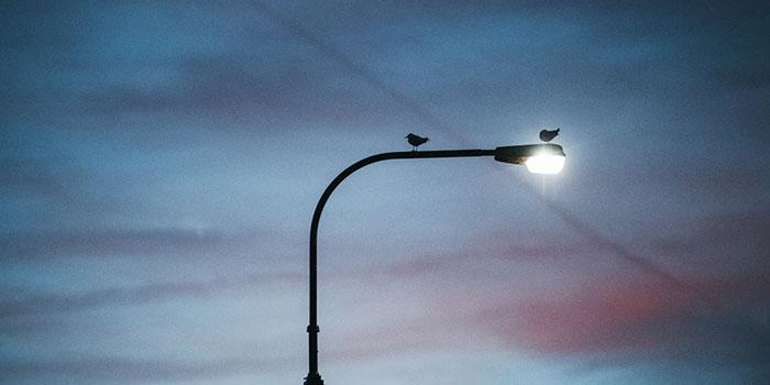 Влияние-уличного-освещения-на-риск-рака