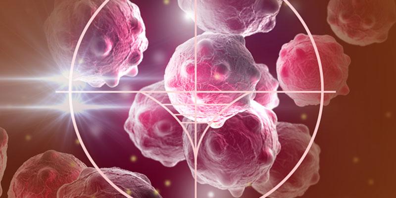 Знания о функциях фермента помогут бороться с опухолями и аутоиммунными заболеваниями