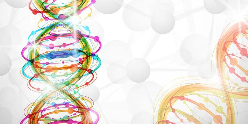 белки против онкологии