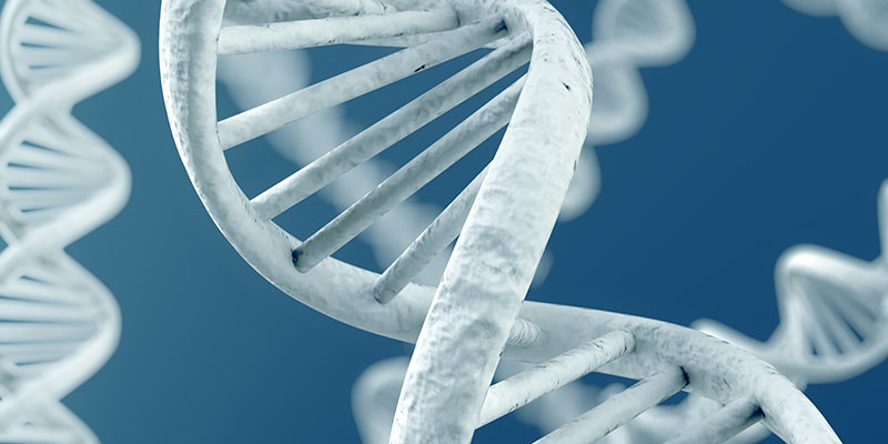 Ген, который поможет уничтожить рак предстательной железы