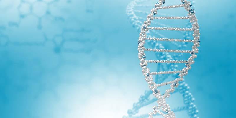 Геномные «шрамы» помогут определить причины и свойства рака