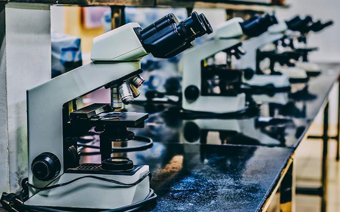 ИГХ при раке молочной железы: исследование ИГХ при онкологии молочной железы, типы рака молочной железы по ИГХ