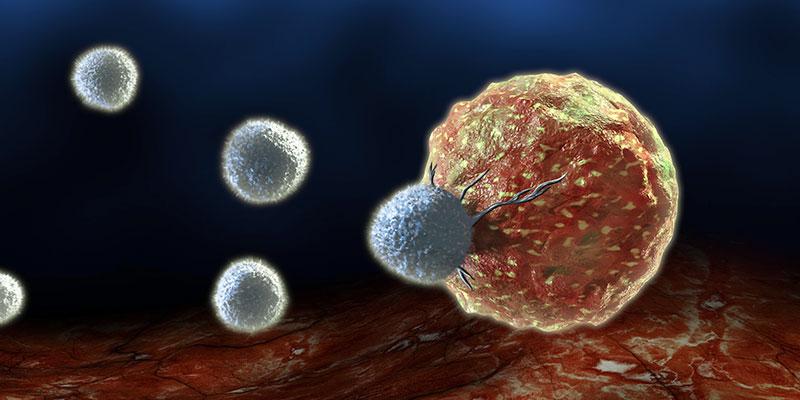 Альтернативное лечение рака в Германии. Терапия дендритными клетками