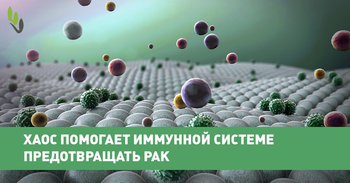 Рак и иммунитет: как повысить иммунитет при онкологии
