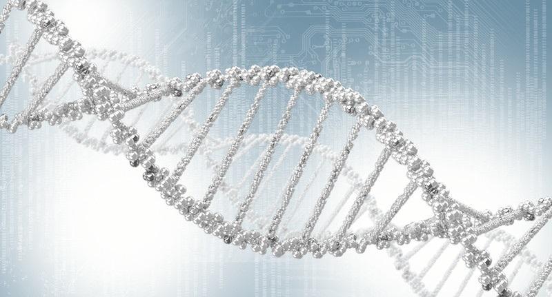 Мутация гена BRCA1 и BRCA2